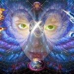 Budos delnas - gydymas naudojant visatos energiją